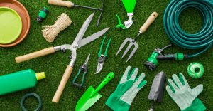 How to Get Your Lawn Ready for the Spring